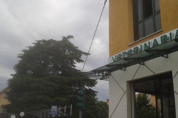 prodotti-vetreria-dagnini-bologna2